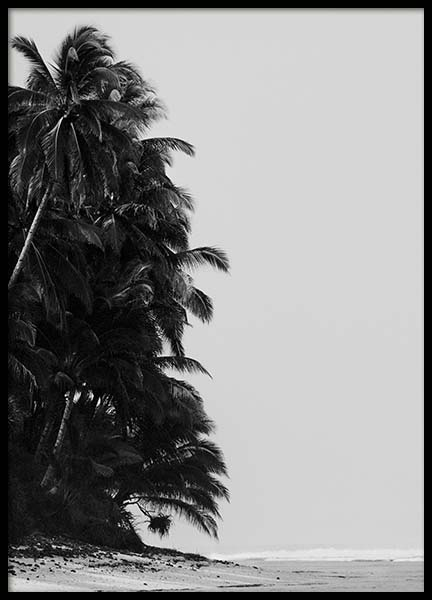Palm Trees By Sea Poster in de groep Posters / Zwart wit bij Desenio AB (10235)