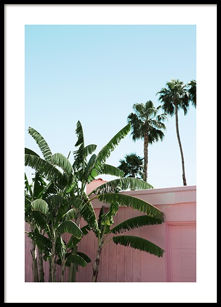 Pink Banana Leaves Poster in de groep Studio Collections / Studio Coast to Coast / Palm Springs bij Desenio AB (10791)
