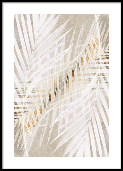 White Palm Leaves Poster in de groep Posters / Fotokunst bij Desenio AB (12059)