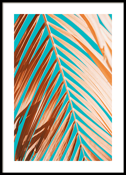 Palm Leaf Against Blue Sky Poster in de groep Posters / Fotokunst bij Desenio AB (12414)