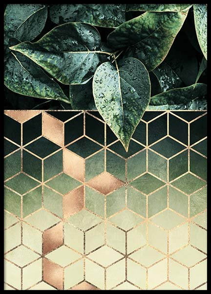 Leaves And Cubes Poster in de groep Posters / Handpicked / Elisabeth Fredriksson bij Desenio AB (2813)