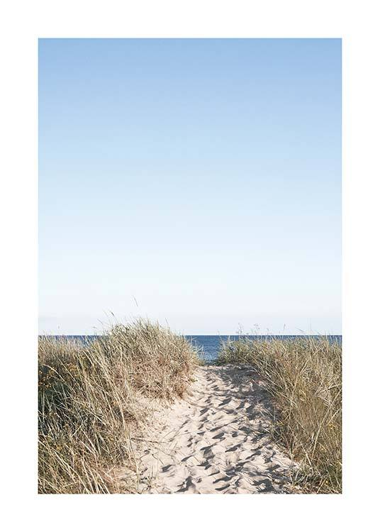 Path on beach Poster / Natuurmotieven bij Desenio AB (10477)