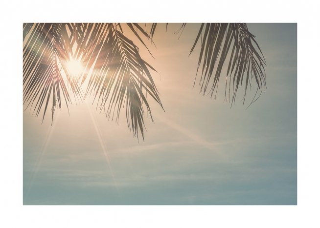 Sunset Palm Leaves Poster / Luchten bij Desenio AB (10882)