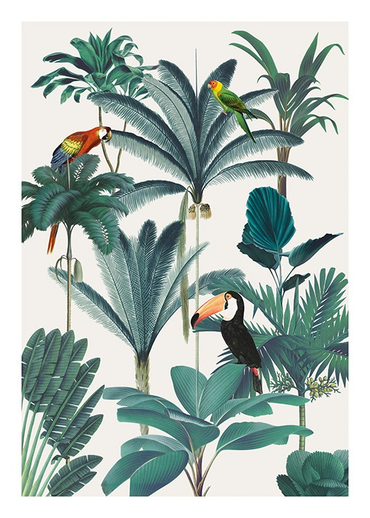 Royal Botanical Birds Poster / Vogels bij Desenio AB (13736)