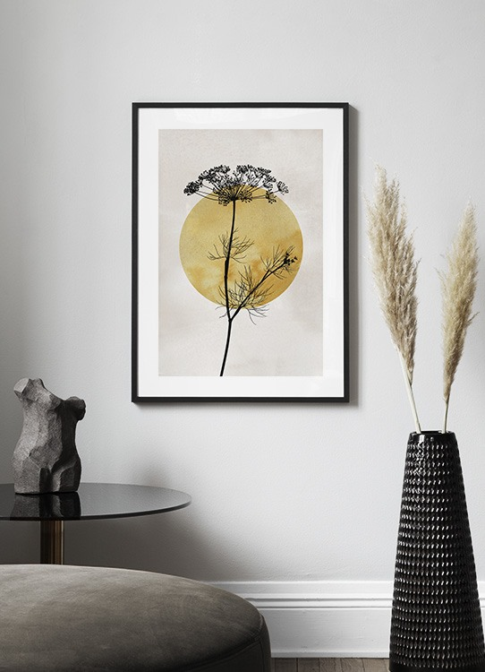 Anthriscus Silhouette Poster Zwarte Plant Desenio Nl