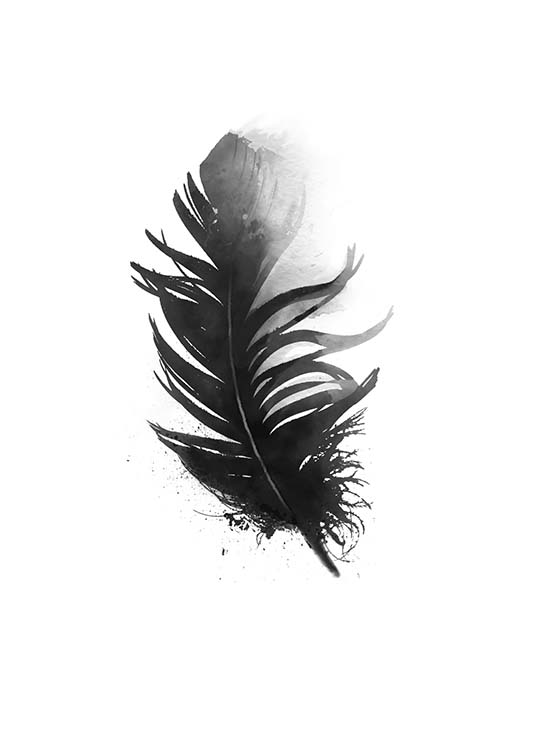 Black Feather Aquarell, Posters / Zwart wit bij Desenio AB (7801)