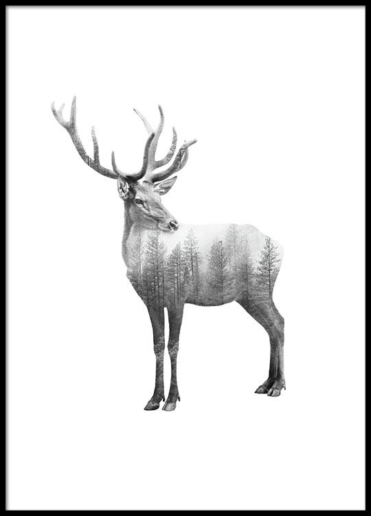 zwart wit posters en prints posters online met fotokunst en dieren. Black Bedroom Furniture Sets. Home Design Ideas