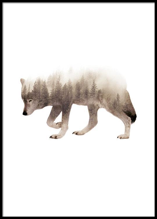Posters met dieren voor woonkamer   Poster met wolf
