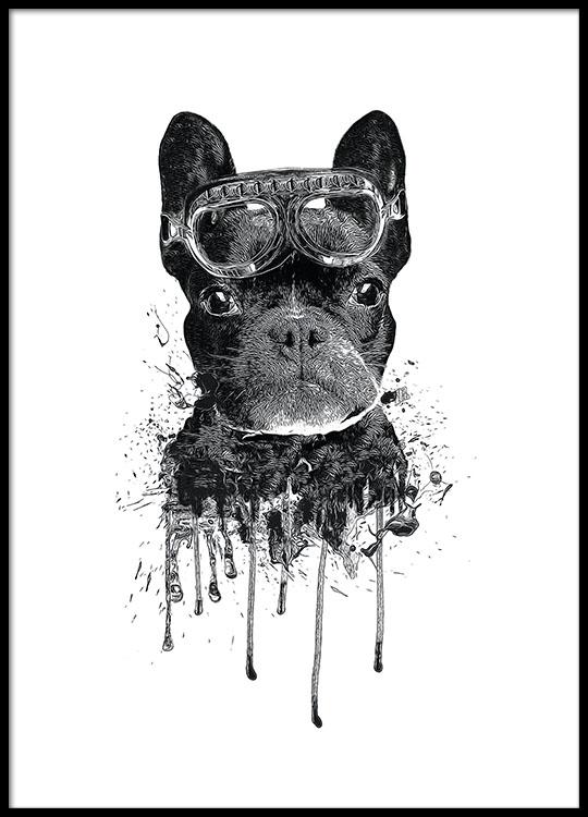 schattige kinderposter met hond moderne poster voor kinderen en kinderkamers met bulldog. Black Bedroom Furniture Sets. Home Design Ideas